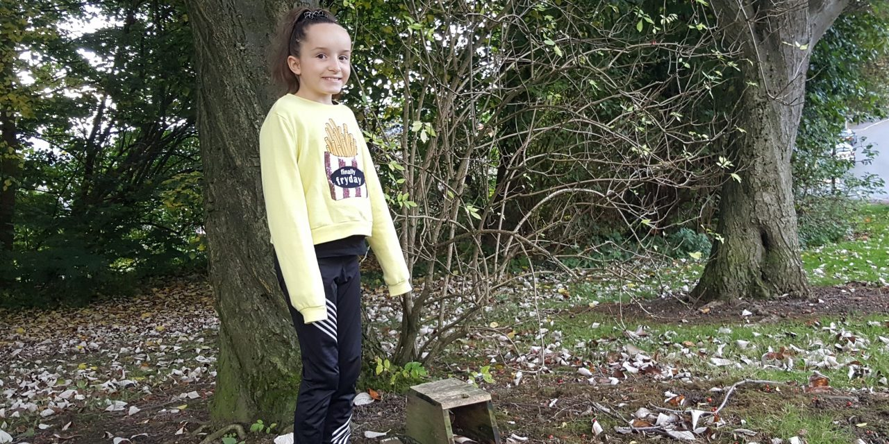 """They're not people, but they're like people"" 10 year-old hangs bird boxes ahead of the winter months"