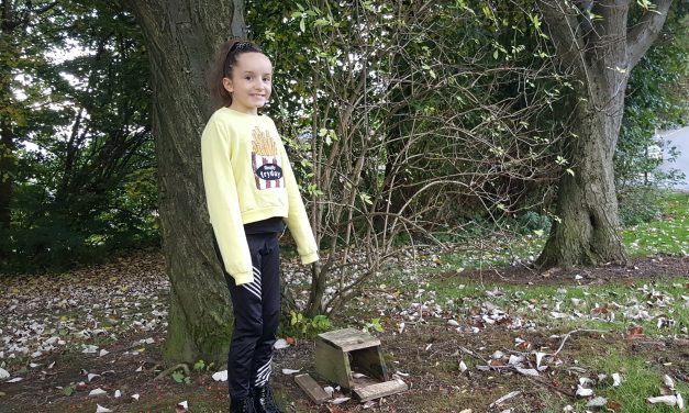"""""""They're not people, but they're like people"""" 10 year-old hangs bird boxes ahead of the winter months"""