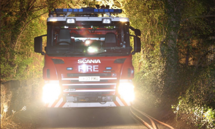 Firefighters attacked on bonfire night in Grimesthorpe