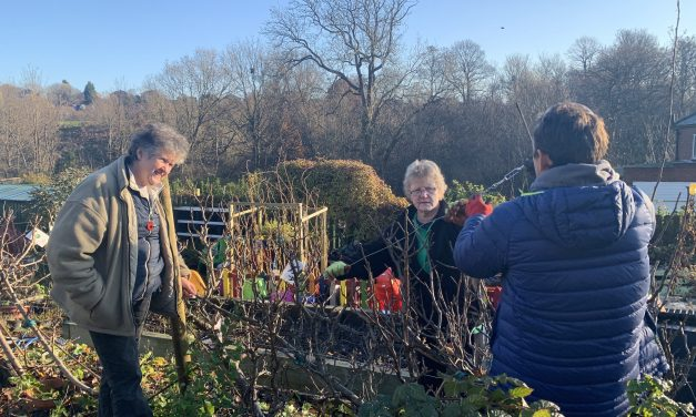 Firth Park Community Allotment given big boost as they're accepted into Co-op's Community Fund